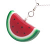 watermelon necklace by inedible jewelry