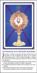 Las Promesas De La Adoracion - Paquete de 25 Tarjetas - Spanish