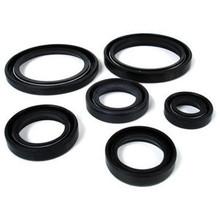 Oil Seal Kit, 99-9958B