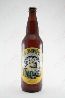 Port Brewing Hop-15 Ale 22 fl oz