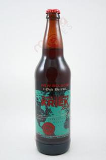 New Belgium Brewing Lips of Faith Series Transatlantique Kriek Beer 22fl oz