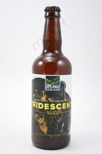 Upland Sour Ales Iridescent Ale 500ml