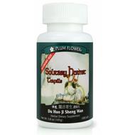 Solitary Hermit Teapills (Du Huo Ji Sheng Wan) - Economy 1,000 Pills/Bottle - Plum Flower Brand