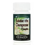 Subdue the Dampness Teapills (Bi Xie Sheng Shi Wan) - 200 Pills/Bottle - Plum Flower Brand