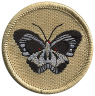 Butterfly Skull Patrol Patch
