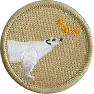 Stargazing Polar Bear Patrol Patch