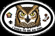 Wood Badge Owl Critter Oval Magnet