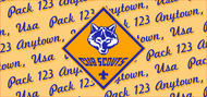 Cub Scout Pack Number Water Bottle SP6925