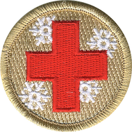 Cool Aid  Patrol Patch