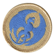 Blue Dragon Patrol Patch