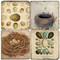 Egg & Nest Coaster Set. Handmade Marble Giftware by Studio Vertu.