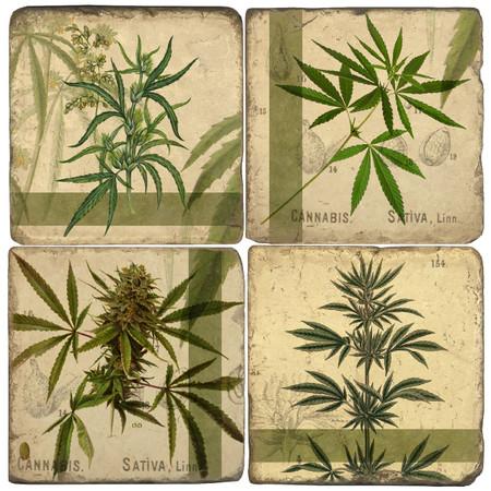 Cannabis Coaster Set
