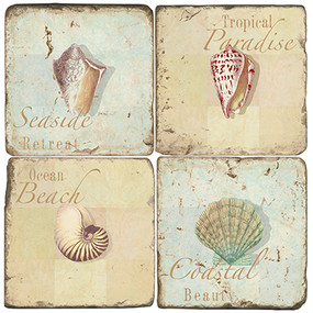 Seashell Coaster Set