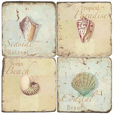 Seashell Coaster Set
