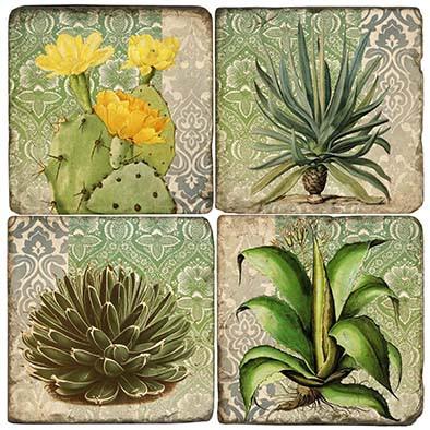 Succulents Coaster Set