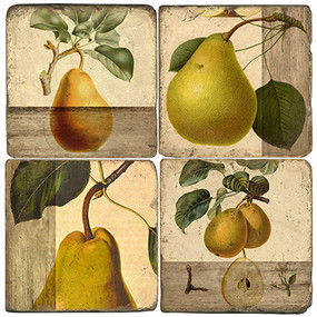 Pear Botanical Coaster Set
