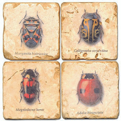 Colorful Bug Coaster Set. Hand Made Marble Giftware by Studio Vertu.