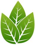 green-carbon-free.jpg