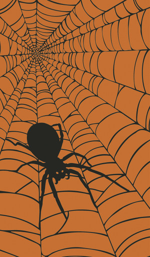 Spider Web with Spider Halloween Window Poster Decorations