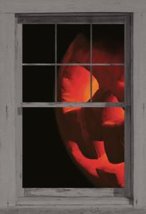 Peeking Jack shown in a window