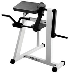 Bicep and Tricep Machine (PROM-BTM)