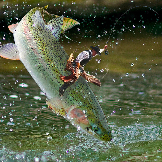 The geometry of landing big fish part ii ascent fly fishing for Colorado fish stocking