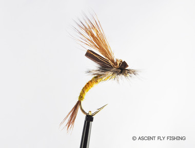 Hex emerger ascent fly fishing for Ascent fly fishing