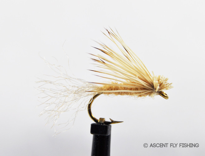 X caddis ascent fly fishing for Ascent fly fishing
