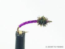 Purple Disco Midge