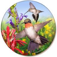 Hummingbird Sandstone Ceramic Coaster | Bird Coaster | Front