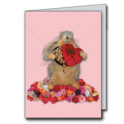 I'm Nuts About You Cards   Funny Squirrel Valentine's Day