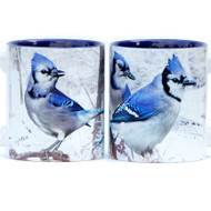 Winter Blue Jays Mug | Jim Rathert Photography
