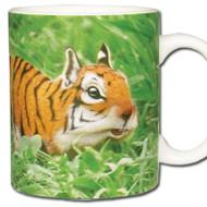 Tiger Squirrel *Tigridisciurus lineatu Mug