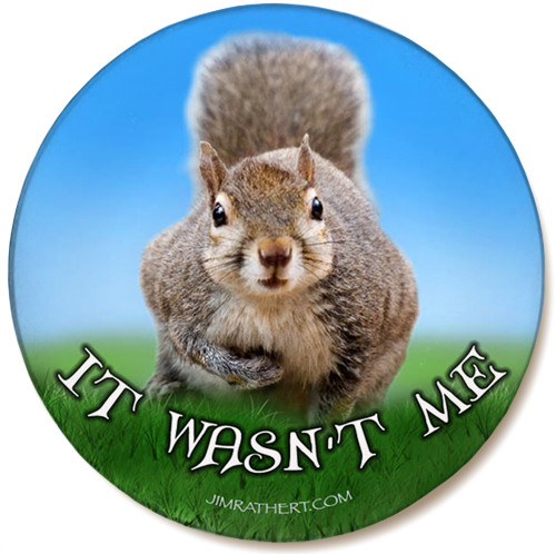 It Wasn't Me Sandstone Ceramic Coaster | Funny Squirrel Coaster | Front