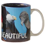 Bald is Beautiful Eagle Mug | Jim Rathert Photography
