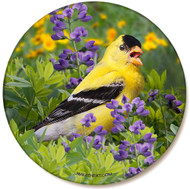 Summer Goldfinch Sandstone Ceramic Coaster | Front