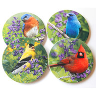 Summer Sandstone Coaster Collection | Set of 4