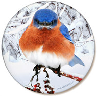 Winter Bluebird Sandstone Ceramic Coaster | Front