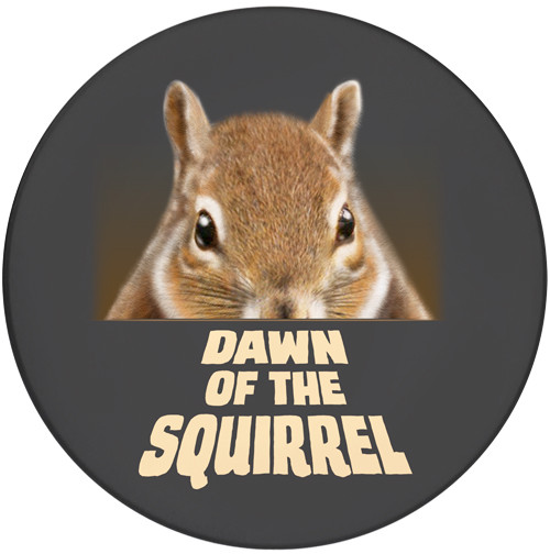 Dawn of the Squirrel Sandstone Ceramic Coaster | Front