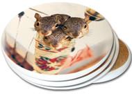 Stocking Stuffer Sandstone Ceramic Coaster | 4pack | Christmas Coasters