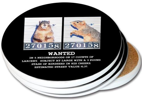 Mugshot Squirrel Sandstone Ceramic Coasters   4pack
