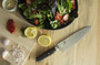 Shun Hiro Chef 8-INCH Chef's Knife (SG0706)