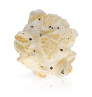 Way Too Expensive White Truffle