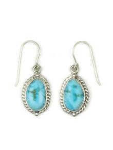 Turquoise Mountain Gem Earrings (ER4685)