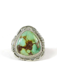 Emerald Valley Turquoise Ring Size 14 by John Nelson