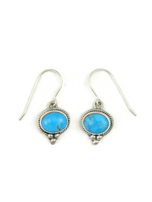 Sleeping Beauty Turquoise Earrings (ER3728)