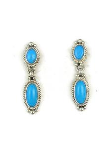 Sleeping Beauty Turquoise Earrings (ER3630)