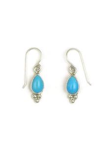 Sleeping Beauty Turquoise Earrings by Shirley Henry (ER3412)