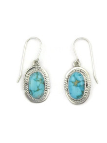 Kingman Turquoise Earrings by Jake Sampson (ER3443)