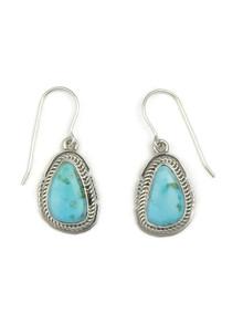 Kingman Turquoise Earrings by Jake Sampson (ER3449)